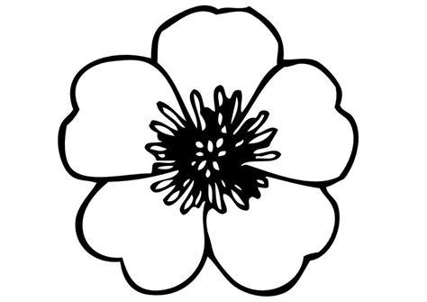 viola fiore disegno disegno da colorare fiori cat 13827