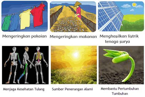 Madu Adalah Sumber Energi 1 gambar pembelajaran 1 tema 7 subtema sumber energi manfaat sinar matahari di rebanas rebanas