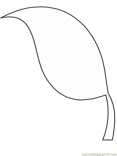 coloring pages leaf shapes free coloring pages of leaf shapes