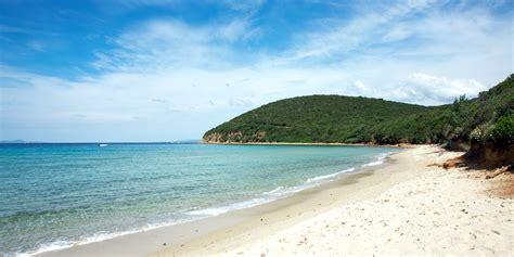 appartamenti toscana mare offerta maggio al mare in toscana villaggio mare si