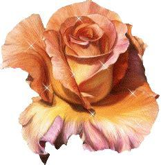 fiori gif animate fiori immagini gif animate clipart 100 gratis