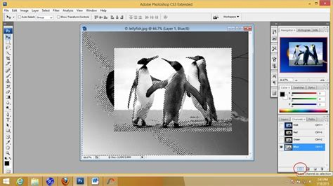tutorial mengedit di vsco tutorial mengedit foto di photoshop cs3 fitrahqolbi
