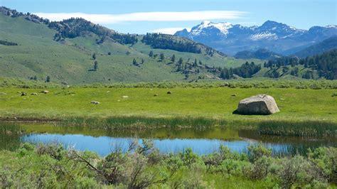 yellowstone national park yellowstone national park holidays cheap yellowstone