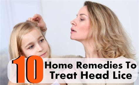 10 effective home remedies to treat lice diy health