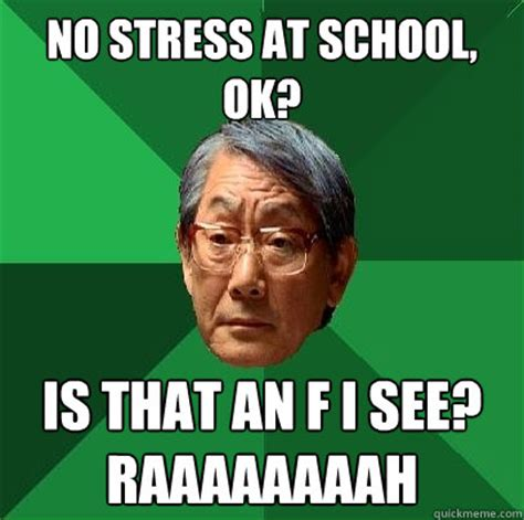 No Ok Meme - no stress at school ok is that an f i see raaaaaaaah