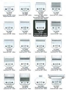 different sizes of razors for haircuts best 25 hair length chart ideas on pinterest