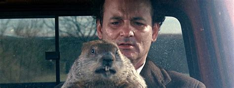 bill murray groundhog day xavier all those routines are speeding up your edward