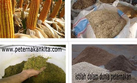 Jual Starbio Plus Di Medan daftar istilah dalam peternakan peternakankita