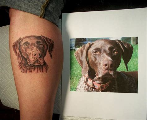 gsp tattoo 1000 images about german shorthaired pointers on