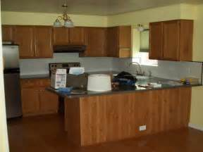 kitchen color ideas with cabinets painting kitchen cabinets color ideas home interior design