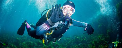 dive sports survival sports news and articles