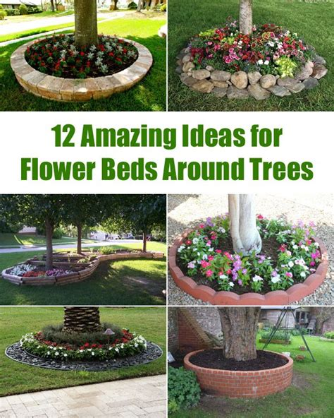 flower bed around tree the 25 best flower beds ideas on pinterest front