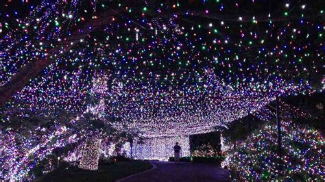 fabulous massive christmas lights display in australia