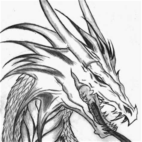 dragon head coloring pages pictures to pin on pinterest