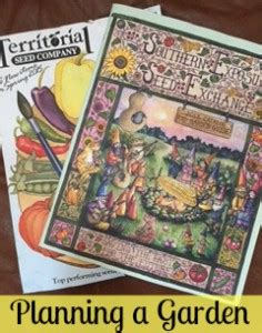 Preparation For A Vegetable Garden How To Have It All Vegetable Garden Magazines