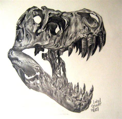 pencil sketch of a dinosaur skull
