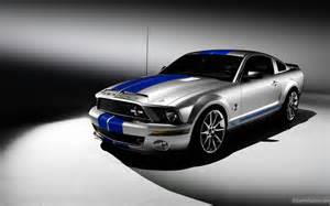 2015 Ford Mustang Gt500 2015 Ford Mustang Shelby Gt500 Snake Wallpaper 1810