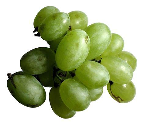 fruit 08 grape free picture green grape fruit