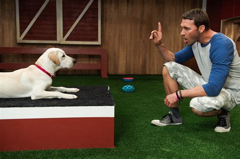 the lucky puppy i brandon mcmillan brandon mcmillan s canine minded