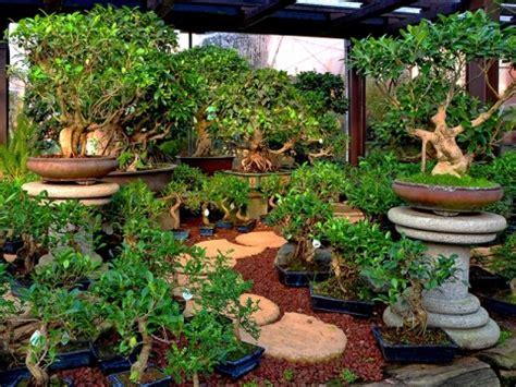 arredo per giardino gazebi e arredi giardino ceretta torino vivai castagno