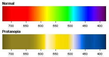 In Humans Red Green Color Blindness Is What Does A Color Challenged Person See