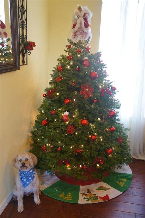 pinery christmas trees 14 reviews christmas trees