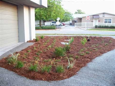 uf ifas extension polk gardening mulches for central florida landscapes