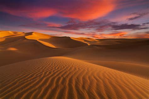 sahara earths largest hot desert