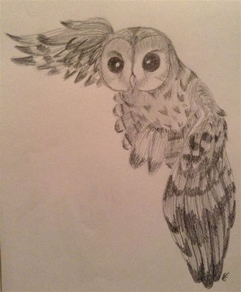 owl drawing by csinorman on deviantart
