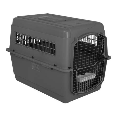 travel kennel unleashed domestic and international pet moving usda pet shipping pet