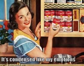 Housewife Meme - advertising irony giggles pinterest