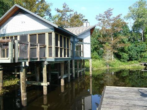 Lake Chicot Cabin Rentals by Loop A Picture Of Chicot State Park Ville Platte