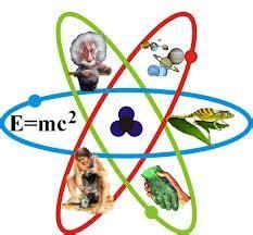 imagenes sorprendentes de la ciencia kellykaramakot a topnotch wordpress com site