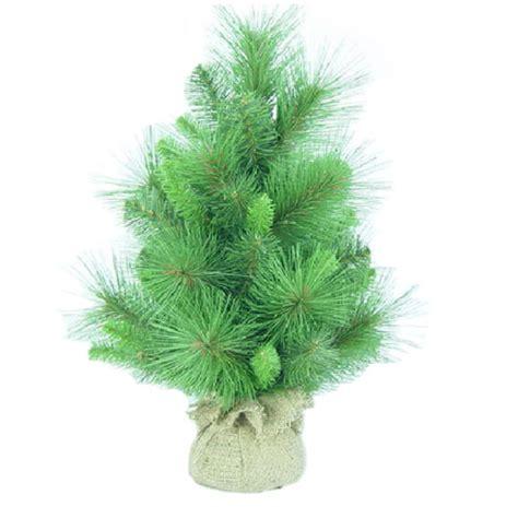 decorative pine trees 404 not found