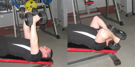 decline bench triceps extension decline dumbbell triceps extension 下斜啞鈴臂屈伸 gymbeginner 健身入門