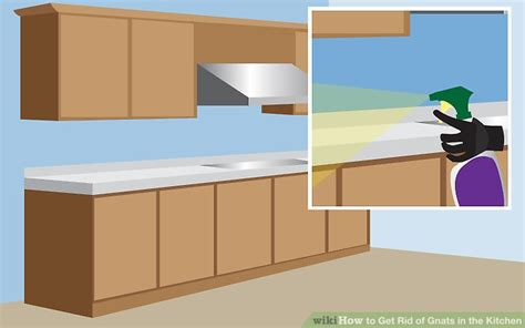 Disinfect Bathtub How To Get Rid Of Gnats In The Kitchen 14 Steps With
