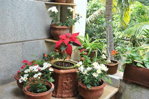 Planter Border Ideas by Mysunnybalcony 187 Blog