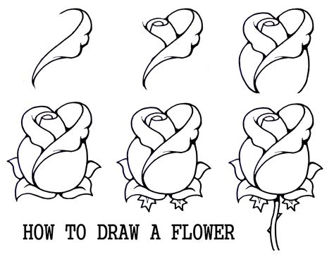 flowers step by step daryl hobson artwork how to draw a flower step by step
