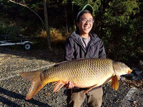 Virginia State Records Virginia State Record Fish Vdgif