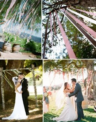 Wedding Arch Between Trees by Can T Decide On Ceremony Backdrop Help Weddingbee