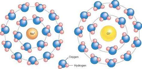 a hydration shell ionic bonds human physiology 78 steps health journal