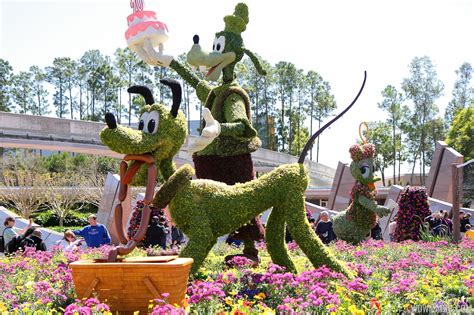 international flower and garden festival 2013 epcot international flower and garden festival opening day tour photo 8 of 127