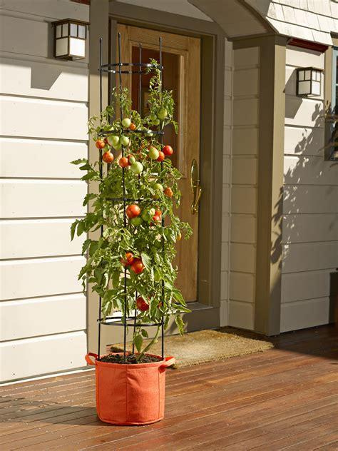 Gardeners Supply Tomato Grow Bags Tomato Grow Bag With 5 Integrated Cage Gardeners