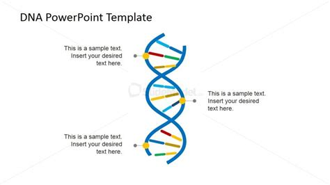 dna templates vertical picture of dna strands for powerpoint slidemodel