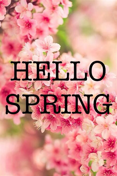 spring quotes hello spring quotes quotesgram