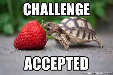 Challenge Accepted Meme - challenge accepted turtle strawberry meme generator