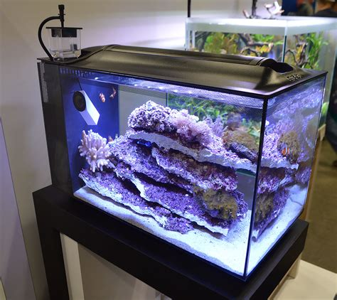 Saltwater Aquascaping Saltwater Tanks Of The Aquatic Experience 2016