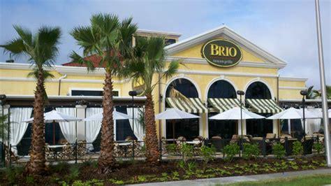 brio restaurant jacksonville brio restaurant sarasota news