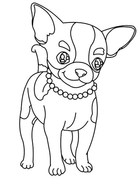 Chiwawa Puppies Coloring Pages | chihuahua coloring pages coloring home