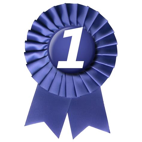 Ribbon 2 In 1 blue ribbon number 1